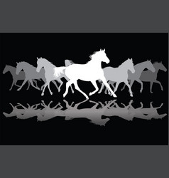 white trotting horses silhouette on black vector image