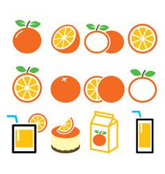 Orange icons set - food nature concept design vector