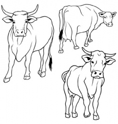 cow set vector image vector image