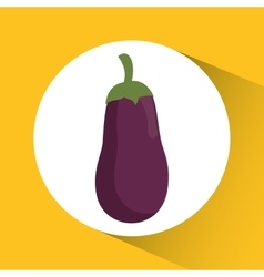 Eggplant icon nutrition and organic food design vector