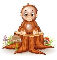 Cartoon cute a baby monkey sitting on tree stump vector image