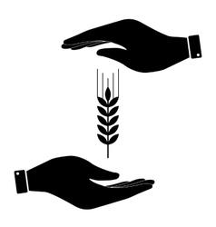 Hand icon care symbol vector image