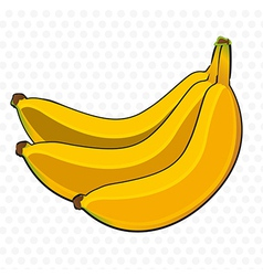 Bunch of bananas cartoon on white background with vector