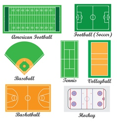 fields for sport games vector image