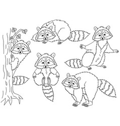 set of cute cartoon raccoons vector image