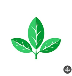 Three green leaves flat logo template vector image vector image