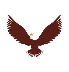Hawk animal bird america vector