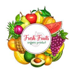 Poster of fresh tropical exotic fruits vector