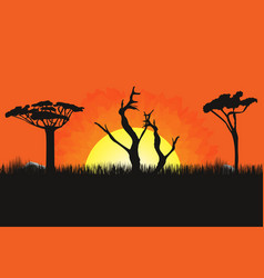african landscape with trees and sun sunset on vector image vector image