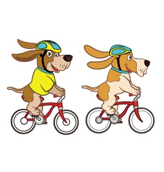 Dog Riding Bicycle vector image vector image