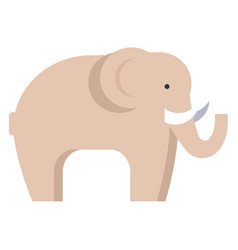 elephant in beige color isolated on white vector image