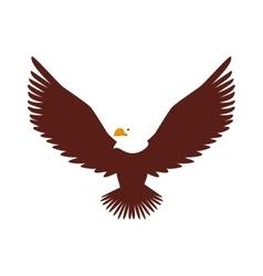 Hawk animal bird america vector