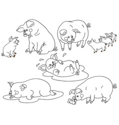 set of cute cartoon pigs vector image vector image