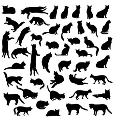 cats silhouette set kitten in different pose vector image vector image