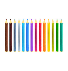 collection of color pencils vector image
