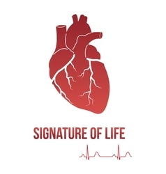 Signature of life design concept vector image