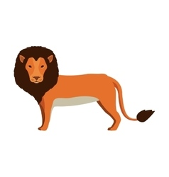 Lion animal icon vector