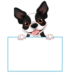 Boston terrier sign vector image vector image