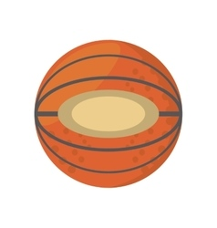 cartoon basketball ball sport school team vector image