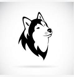 Dog siberian husky on white background dog vector
