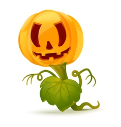 Pumpkin monster vector image