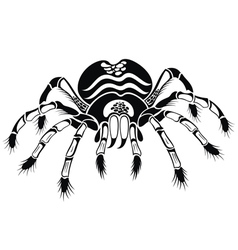 Black tarantula vector