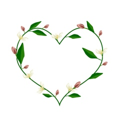 Wine magnolia flowers in a heart shape vector