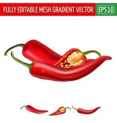 Hot red chili peppers on white background vector