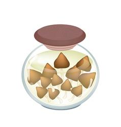 A jar of delicious marinated termite mushroom vector