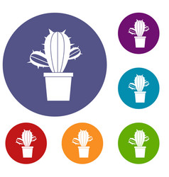 Cactus houseplants in pot icons set vector