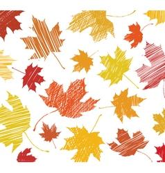 Maple leaf sketch vector