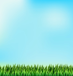 Green grass lawn on blue sky floral nature spring vector