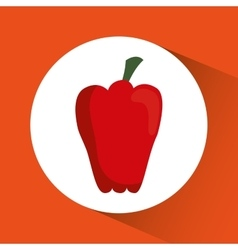 Pepper icon nutrition and organic food design vector
