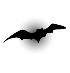 bat silhouettes vector image