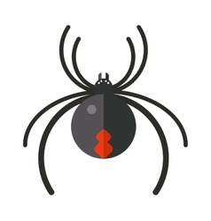 Flat spider insect danger silhouette icon vector image
