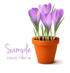 Fresh spring flowers easter background vector