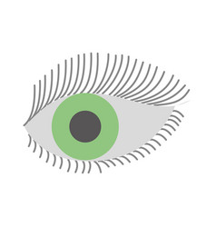 Green eye look eyelashes vision cartoon vector