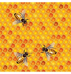 Honeycells bees seamless vector