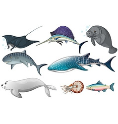 Ocean animals vector image vector image