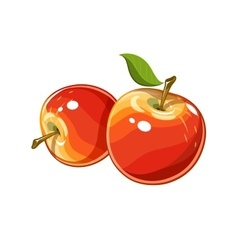 Ripe juicy apple vector image vector image