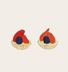Strawberry and blueberry mini tart sketch vector