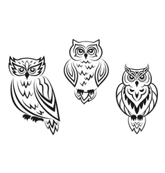 Black and white owl bird tatoos vector