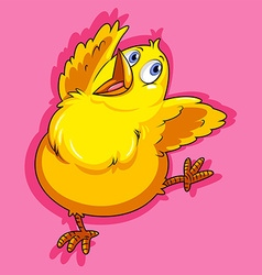 Little chicken on pink vector