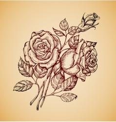 Vintage flowers Hand drawn retro sketch flower vector image