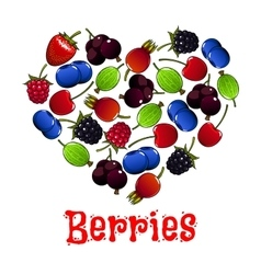 Berries heart shape symbol vector image vector image