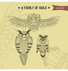 Family owl vector