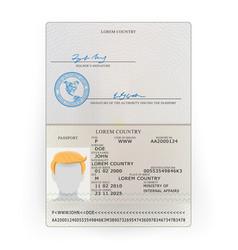 International passport sample personal vector