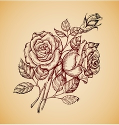 Vintage flowers hand drawn retro sketch flower vector