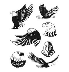 Monochrome set of eagles vector