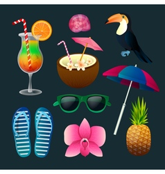 Tropical Elements Set Cocktails Flowers Sunglasses vector image
